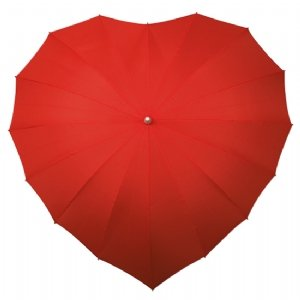 Heard-Shaped-Umbrella-ww