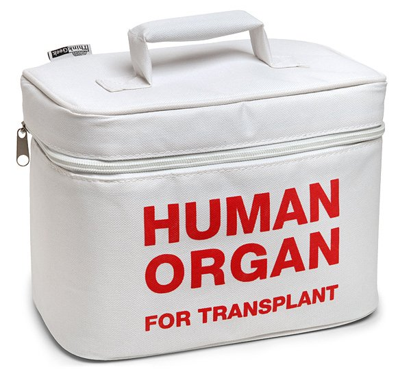 organ-transport-lunch-cooler-ww