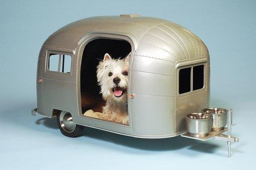 pet-camper-ww
